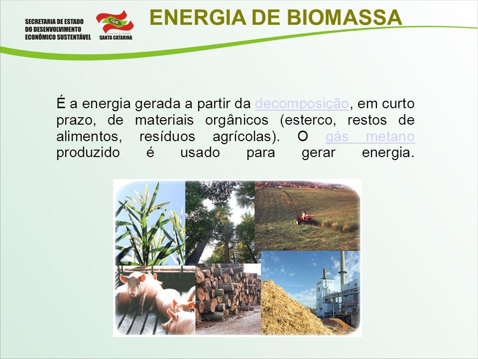 ENERGIA DE BIOMASSA É a energia gerada a partir da decomposição, em curto prazo, de materiais orgânicos (esterco, restos de alimentos, resíduos agríco