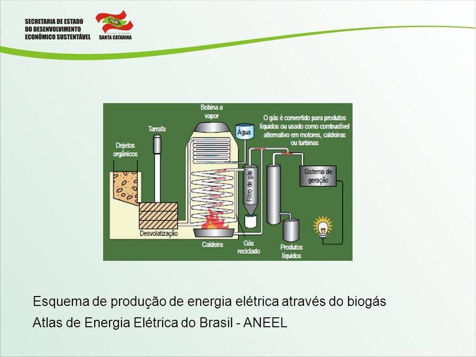 Esquema de produção de energia elétrica através do biogás Atlas de Energia Elétrica do Brasil - ANEEL