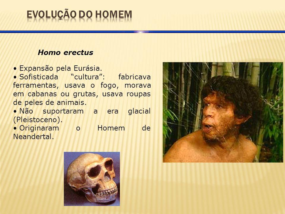 Homo erectus Expansão pela Eurásia.