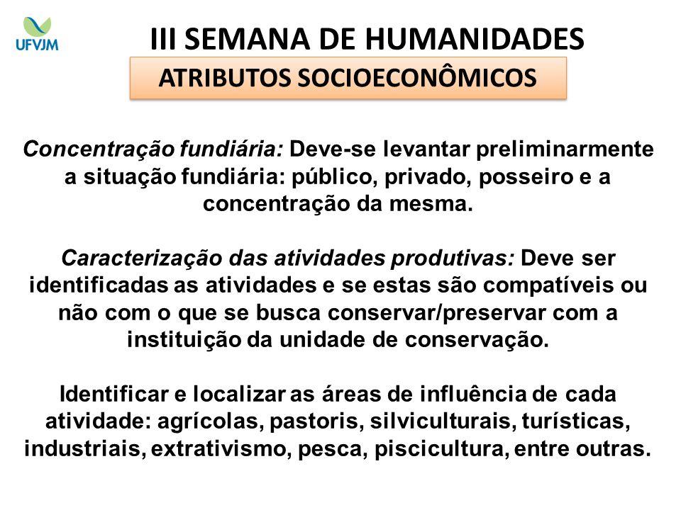 ATRIBUTOS SOCIOECONÔMICOS Concentração fundiária: Deve-se levantar preliminarmente a situação fundiária: público, privado, posseiro e a concentração d