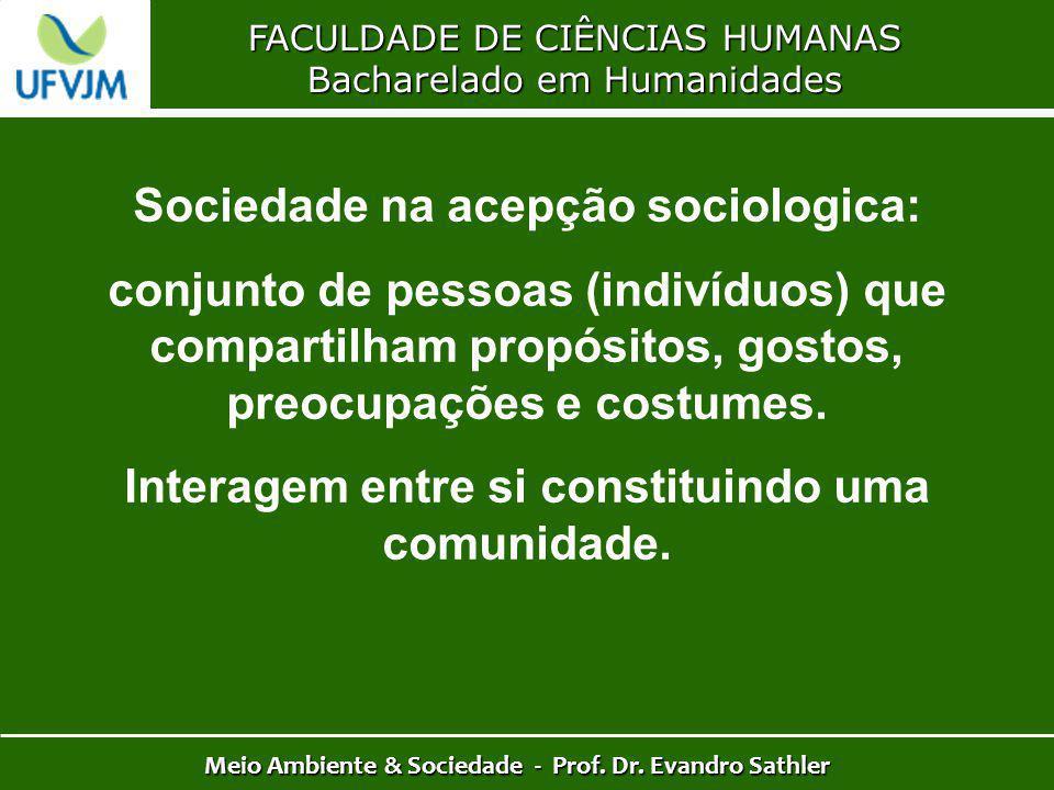 FACULDADE DE CIÊNCIAS HUMANAS Bacharelado em Humanidades Meio Ambiente & Sociedade - Prof. Dr. Evandro Sathler Sociedade na acepção sociologica: conju