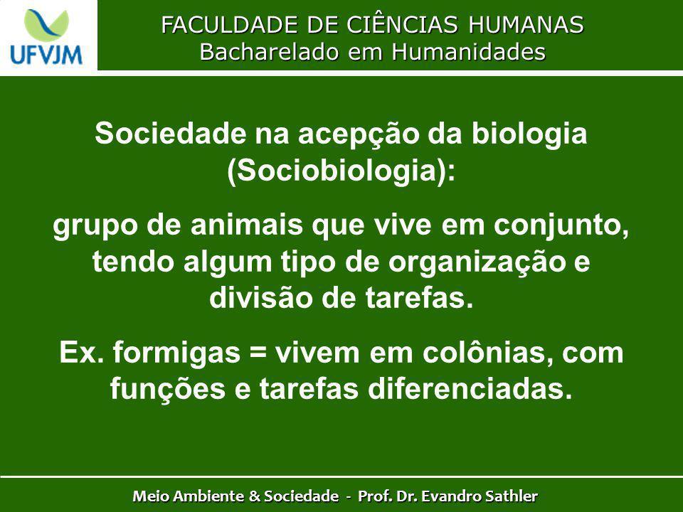 FACULDADE DE CIÊNCIAS HUMANAS Bacharelado em Humanidades Meio Ambiente & Sociedade - Prof. Dr. Evandro Sathler Sociedade na acepção da biologia (Socio