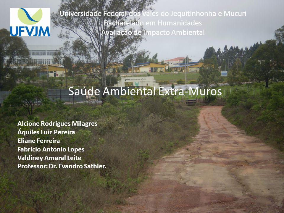 Universidade Federal dos Vales do Jequitinhonha e Mucuri Bacharelado em Humanidades Avaliação de Impacto Ambiental Saúde Ambiental Extra-Muros Alcione