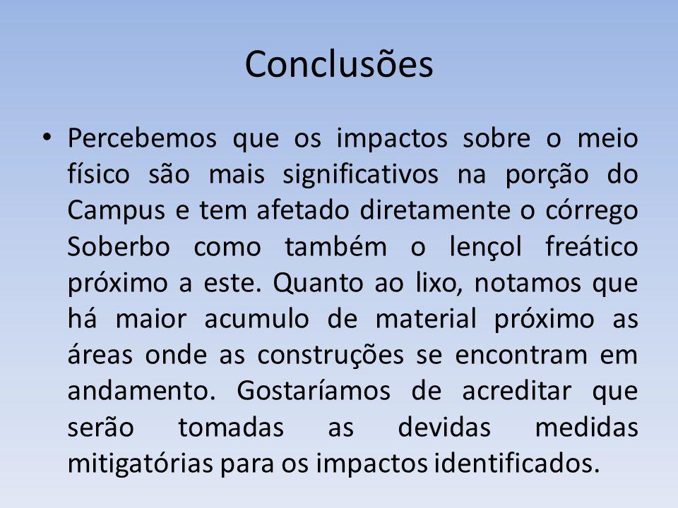 Conclusões Percebemos que os impactos sobre o meio físico são mais significativos na porção do Campus e tem afetado diretamente o córrego Soberbo como