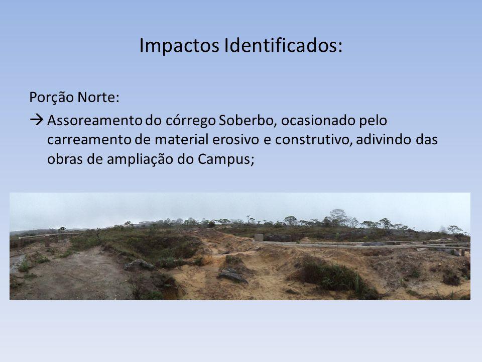 Impactos Identificados: Porção Norte: Assoreamento do córrego Soberbo, ocasionado pelo carreamento de material erosivo e construtivo, adivindo das obr