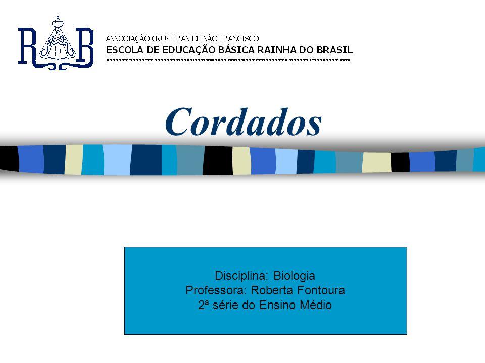 Cordados Disciplina: Biologia Professora: Roberta Fontoura 2ª série do Ensino Médio