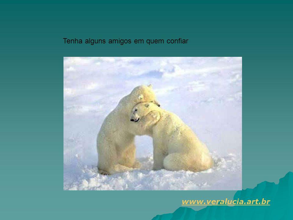 Tenha alguns amigos em quem confiar www.veralucia.art.br
