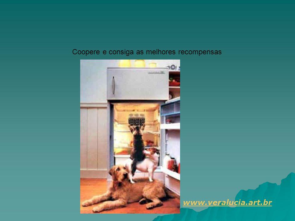 Coopere e consiga as melhores recompensas www.veralucia.art.br