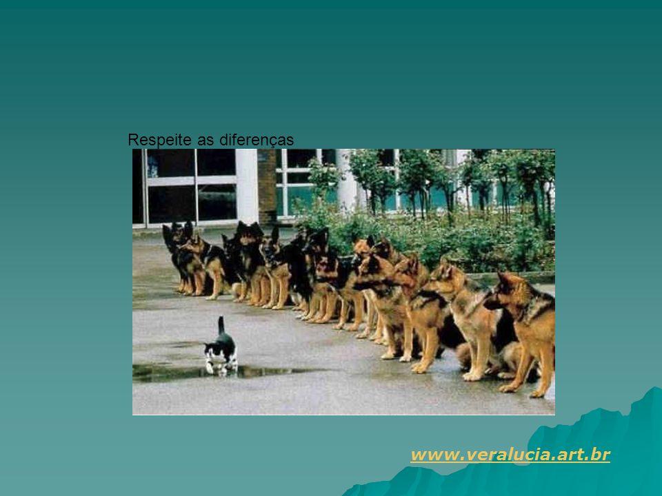 Respeite as diferenças www.veralucia.art.br