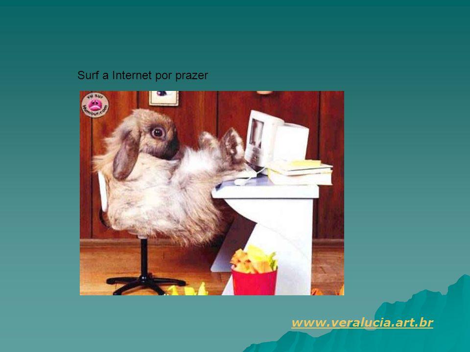 Surf a Internet por prazer www.veralucia.art.br