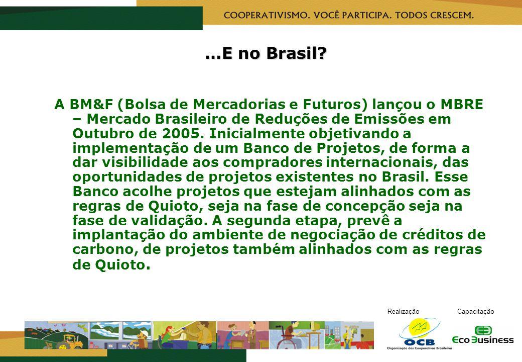 RealizaçãoCapacitação …E no Brasil? A BM&F (Bolsa de Mercadorias e Futuros) lançou o MBRE – Mercado Brasileiro de Reduções de Emissões em Outubro de 2
