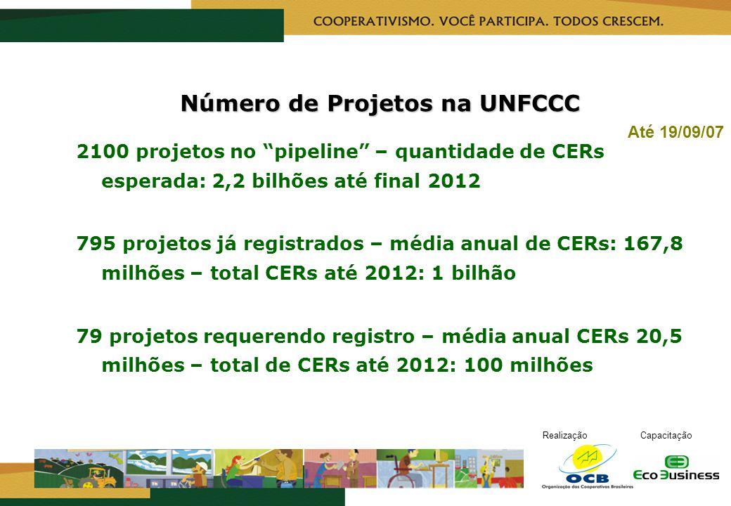 RealizaçãoCapacitação Até 19/09/07 Número de Projetos na UNFCCC 2100 projetos no pipeline – quantidade de CERs esperada: 2,2 bilhões até final 2012 79