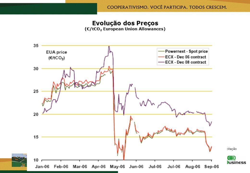 RealizaçãoCapacitação Evolução dos Preços (/tCO 2 European Union Allowances)
