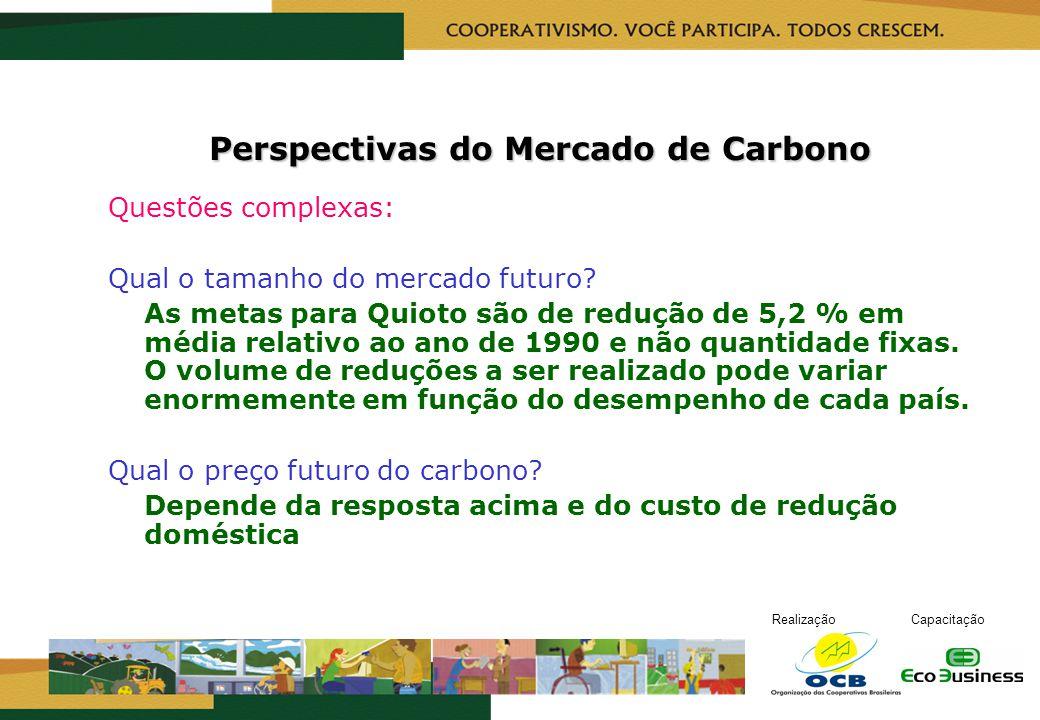 RealizaçãoCapacitação Perspectivas do Mercado de Carbono Questões complexas: Qual o tamanho do mercado futuro? As metas para Quioto são de redução de