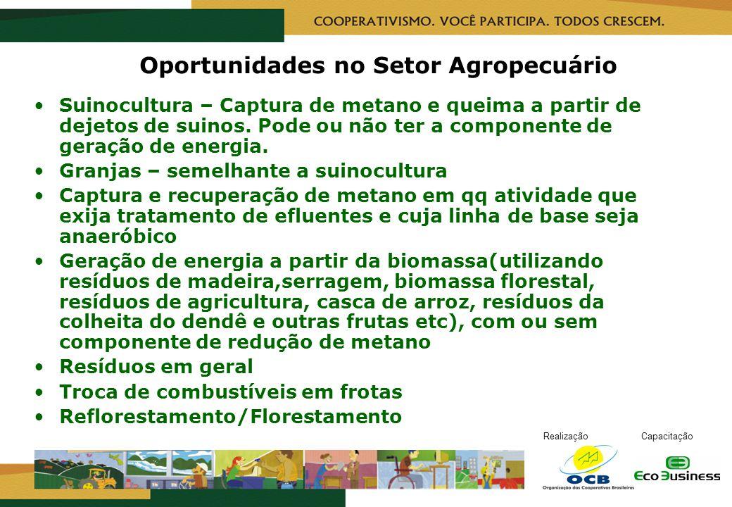 RealizaçãoCapacitação Oportunidades no Setor Agropecuário Suinocultura – Captura de metano e queima a partir de dejetos de suinos. Pode ou não ter a c