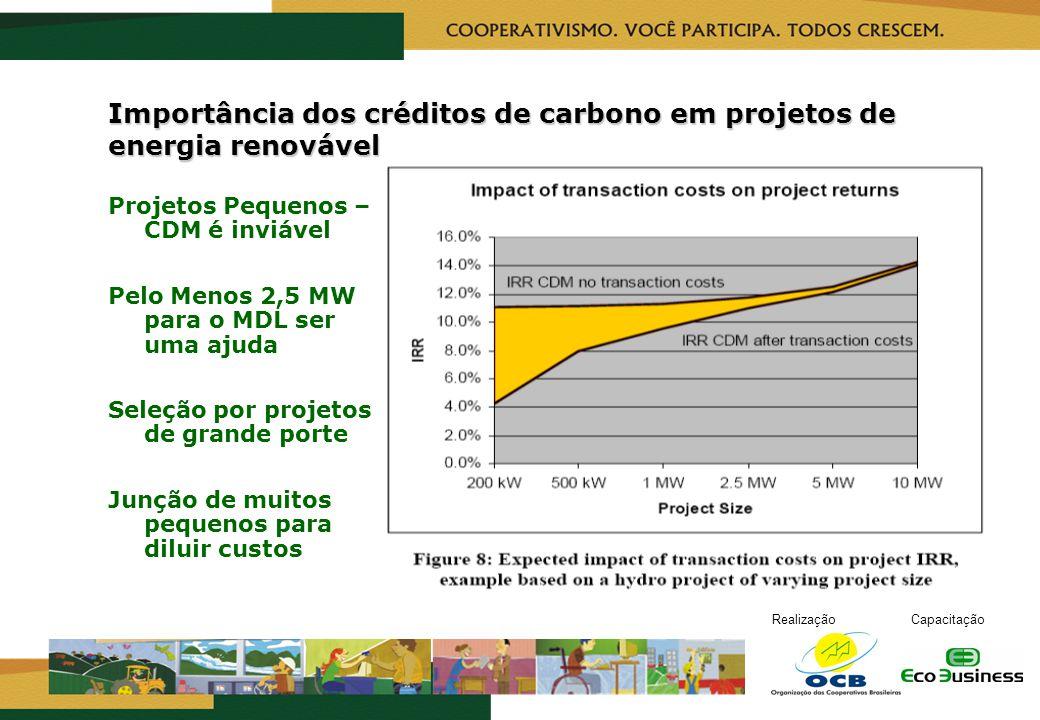 RealizaçãoCapacitação Importância dos créditos de carbono em projetos de energia renovável Projetos Pequenos – CDM é inviável Pelo Menos 2,5 MW para o