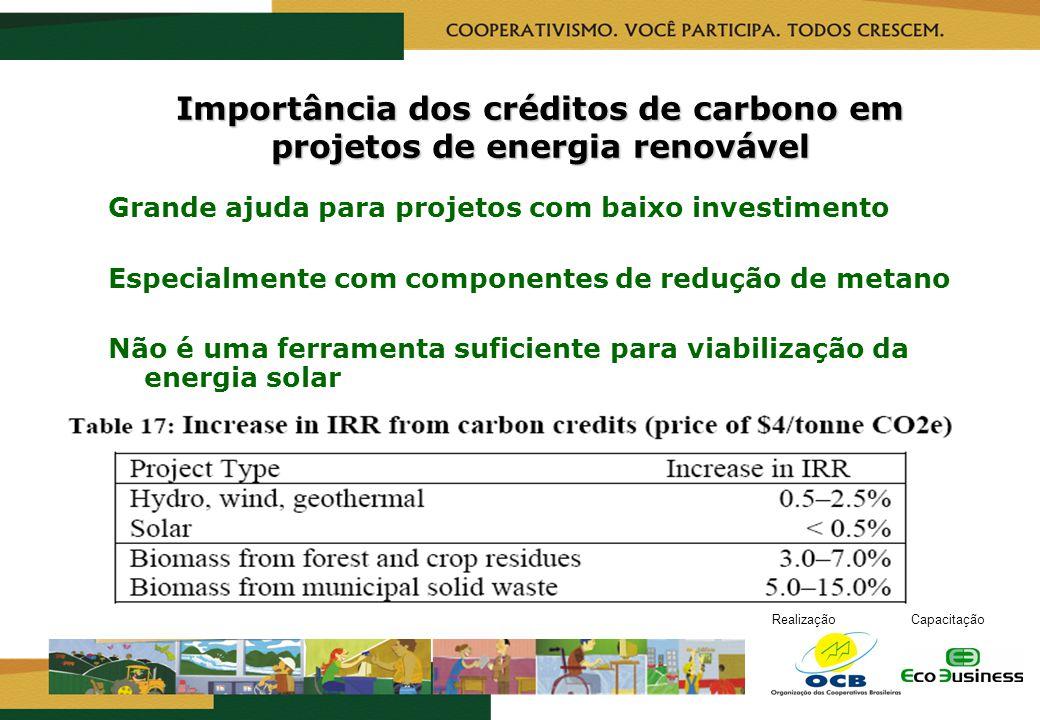 RealizaçãoCapacitação Importância dos créditos de carbono em projetos de energia renovável Grande ajuda para projetos com baixo investimento Especialm
