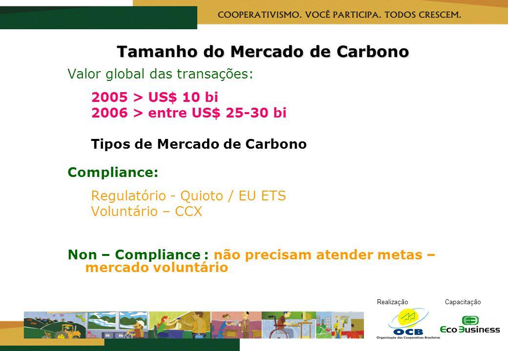 RealizaçãoCapacitação Tamanho do Mercado de Carbono Valor global das transações: 2005 > US$ 10 bi 2006 > entre US$ 25-30 bi Tipos de Mercado de Carbon
