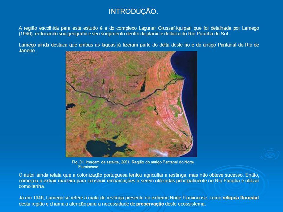 A região escolhida para este estudo é a do complexo Lagunar Grussaí-Iquipari que foi detalhada por Lamego (1946), enfocando sua geografia e seu surgimento dentro da planície deltaica do Rio Paraíba do Sul.