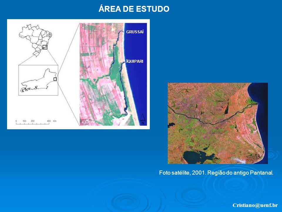Cristiano@uenf.br Foto satélite, 2001. Região do antigo Pantanal. ÁREA DE ESTUDO I QUIPARI GRUSSAÍ