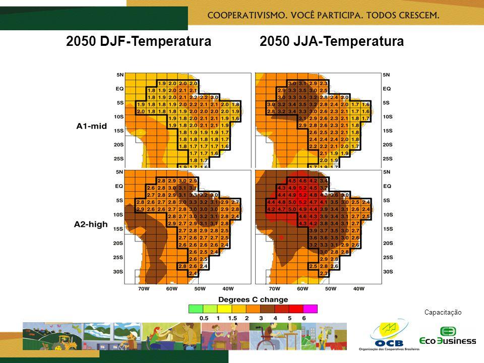 RealizaçãoCapacitação 2050 DJF-Temperatura2050 JJA-Temperatura