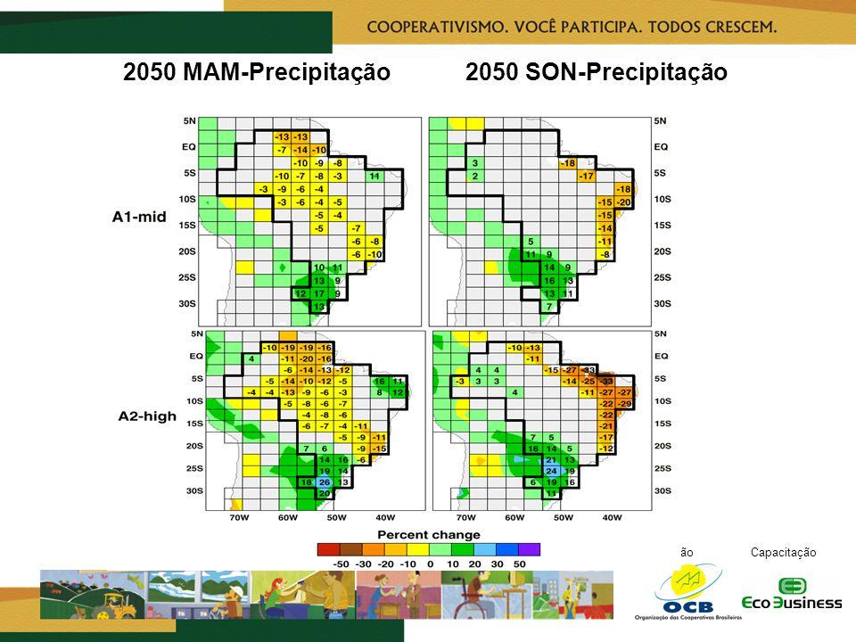 RealizaçãoCapacitação 2050 MAM-Precipitação2050 SON-Precipitação