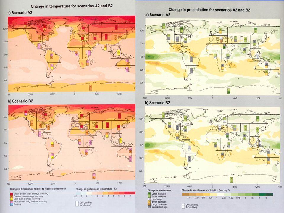 RealizaçãoCapacitação Temperatura média anual-Brasil (Anomalia em o C) Precipitação média anual-Brasil (Anomalia em %)