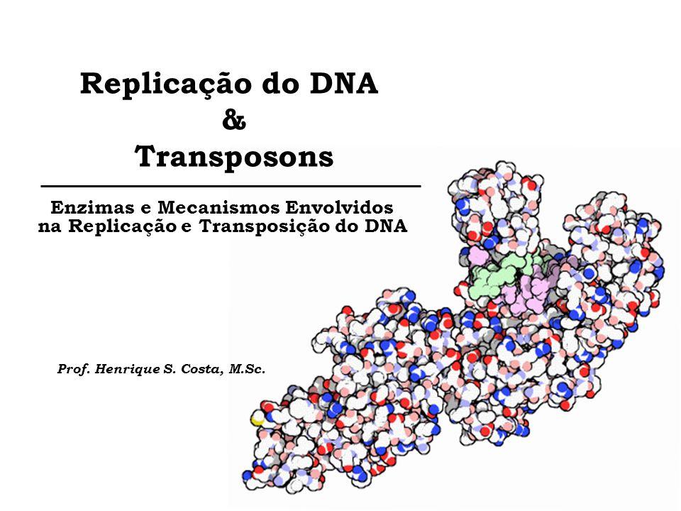 Replicação do DNA & Transposons Enzimas e Mecanismos Envolvidos na Replicação e Transposição do DNA Prof. Henrique S. Costa, M.Sc.