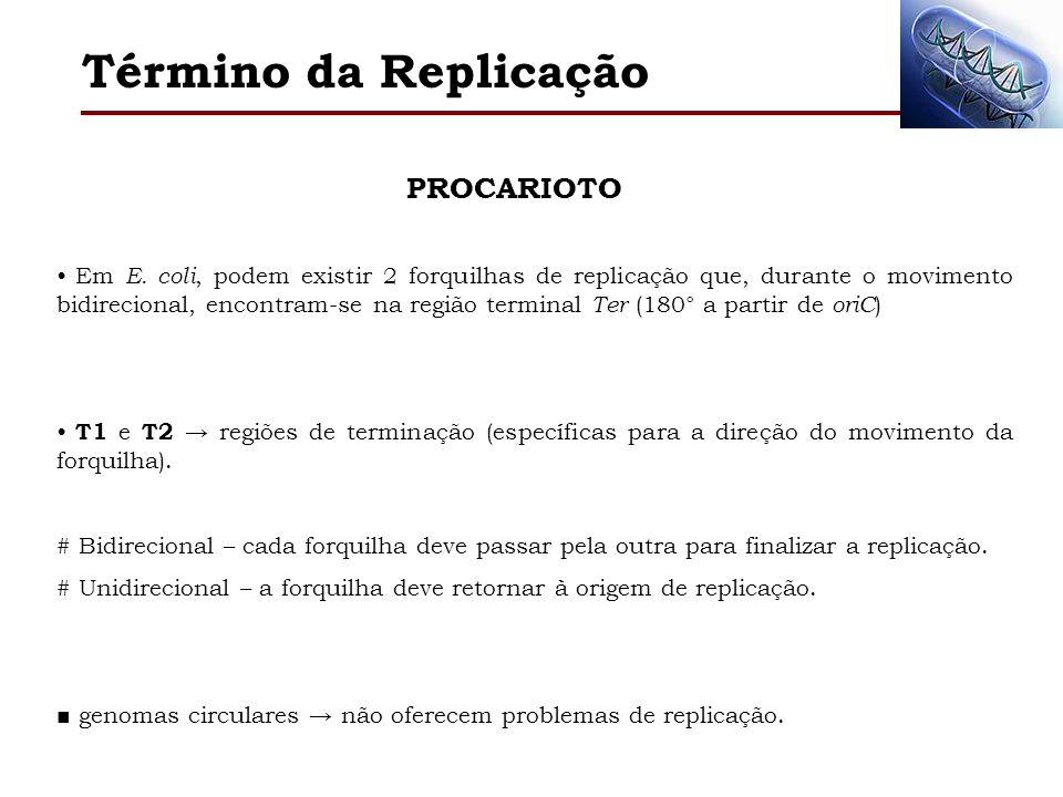 Término da Replicação Em E. coli, podem existir 2 forquilhas de replicação que, durante o movimento bidirecional, encontram-se na região terminal Ter