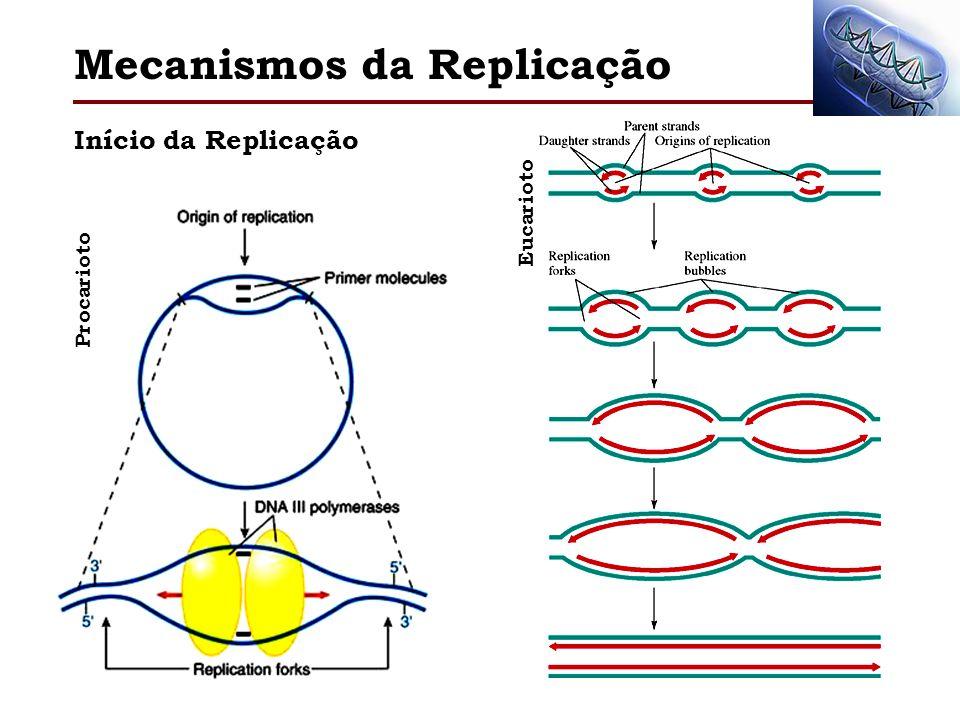Mecanismos da Replicação Início da Replicação Procarioto Eucarioto
