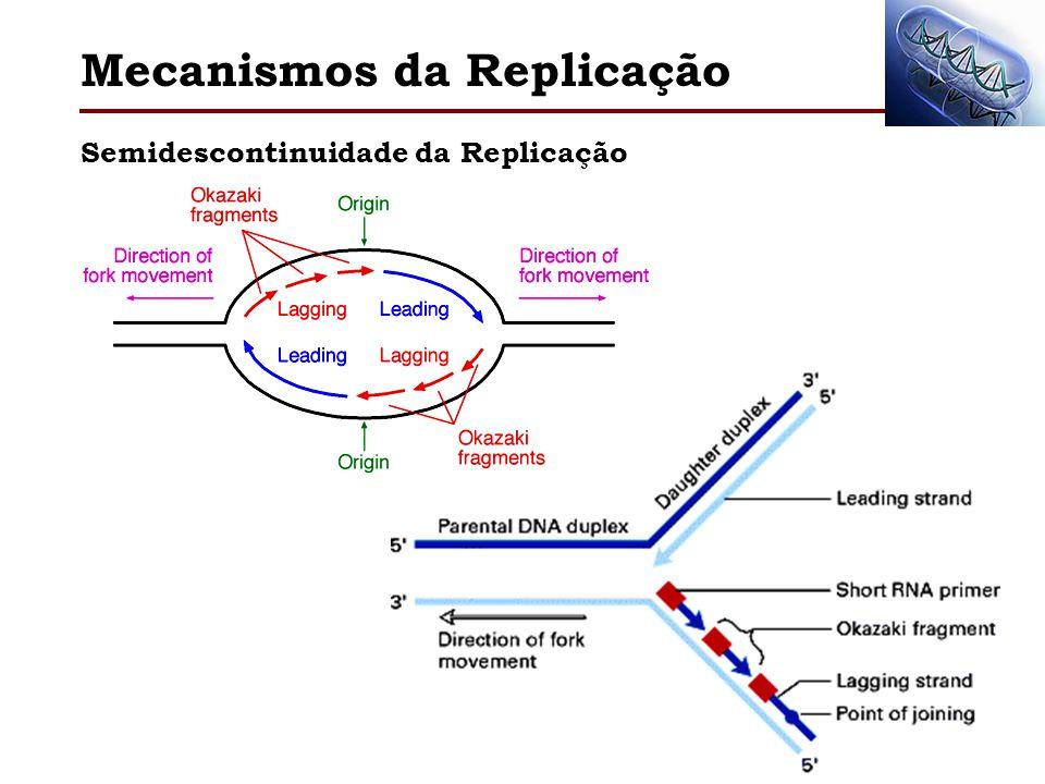 Semidescontinuidade da Replicação Mecanismos da Replicação