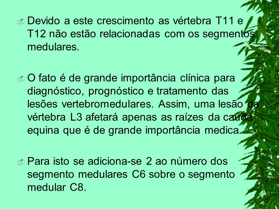 Devido a este crescimento as vértebra T11 e T12 não estão relacionadas com os segmentos medulares. O fato é de grande importância clínica para diagnós