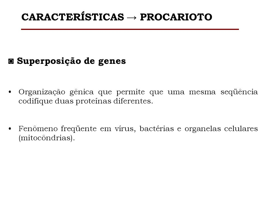 1.Bacteriófagos. 2.Plasmídeos. 3.Transposons. CARACTERÍSTICAS PROCARIOTO