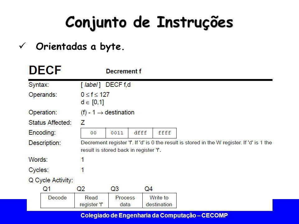Universidade Federal do Vale do São Francisco - UNIVASF Colegiado de Engenharia da Computação – CECOMP Conjunto de Instruções Orientadas a byte.