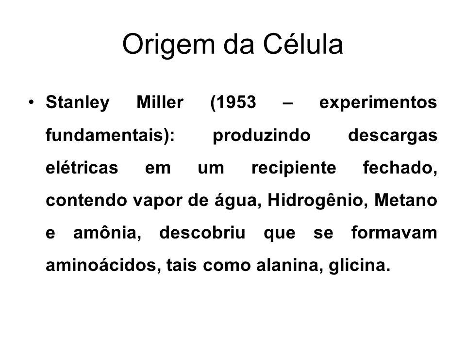 Origem da Célula Stanley Miller (1953 – experimentos fundamentais): produzindo descargas elétricas em um recipiente fechado, contendo vapor de água, H