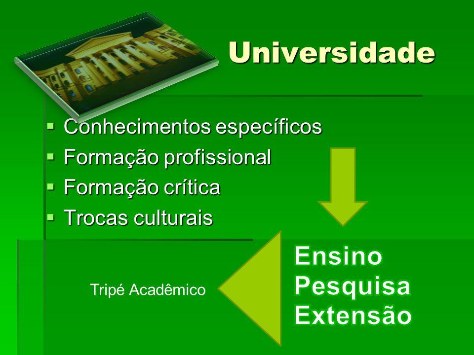 Universidade Universidade Conhecimentos específicos Conhecimentos específicos Formação profissional Formação profissional Formação crítica Formação cr