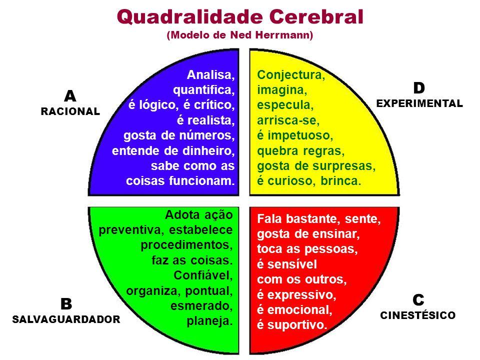 Quadralidade Cerebral (Modelo de Ned Herrmann) Analisa, quantifica, é lógico, é crítico, é realista, gosta de números, entende de dinheiro, sabe como as coisas funcionam.