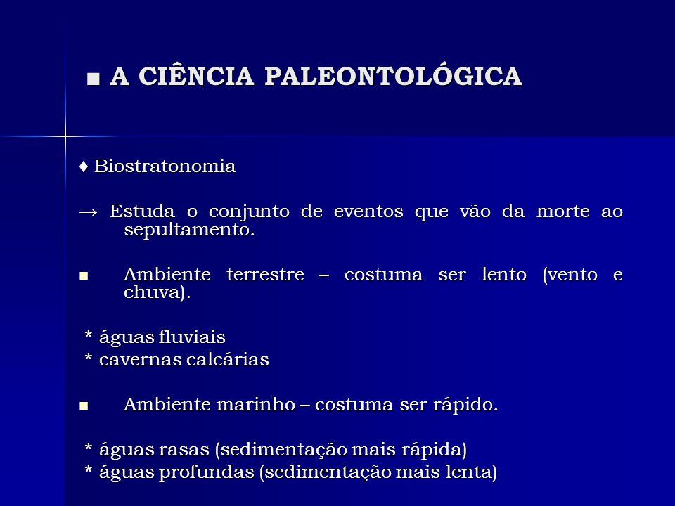 A CIÊNCIA PALEONTOLÓGICA A CIÊNCIA PALEONTOLÓGICA Biostratonomia Biostratonomia Estuda o conjunto de eventos que vão da morte ao sepultamento. Estuda
