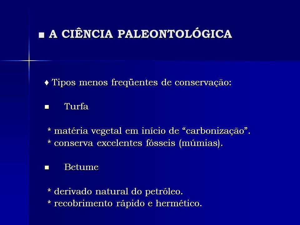 A CIÊNCIA PALEONTOLÓGICA A CIÊNCIA PALEONTOLÓGICA Tipos menos freqüentes de conservação: Tipos menos freqüentes de conservação: Turfa Turfa * matéria