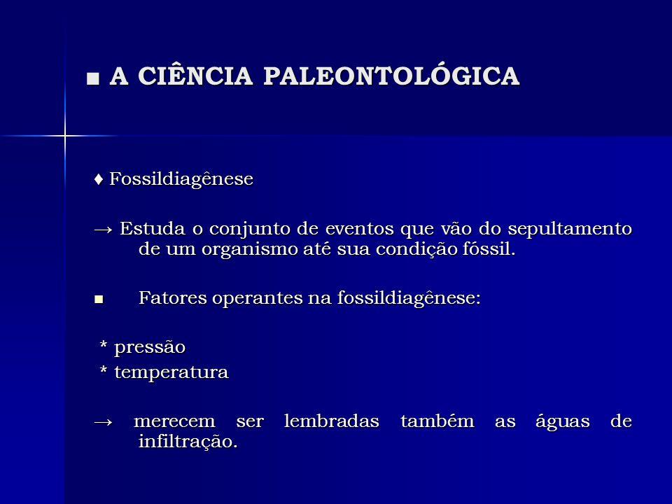 A CIÊNCIA PALEONTOLÓGICA A CIÊNCIA PALEONTOLÓGICA Fossildiagênese Fossildiagênese Estuda o conjunto de eventos que vão do sepultamento de um organismo