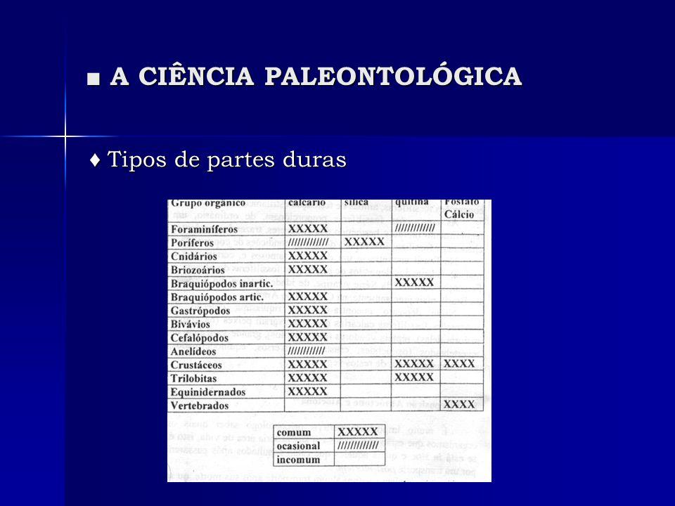 A CIÊNCIA PALEONTOLÓGICA A CIÊNCIA PALEONTOLÓGICA Tipos de partes duras Tipos de partes duras