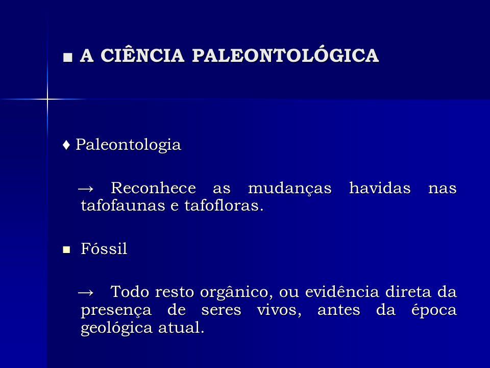 A CIÊNCIA PALEONTOLÓGICA A CIÊNCIA PALEONTOLÓGICA Paleontologia Paleontologia Reconhece as mudanças havidas nas tafofaunas e tafofloras. Reconhece as