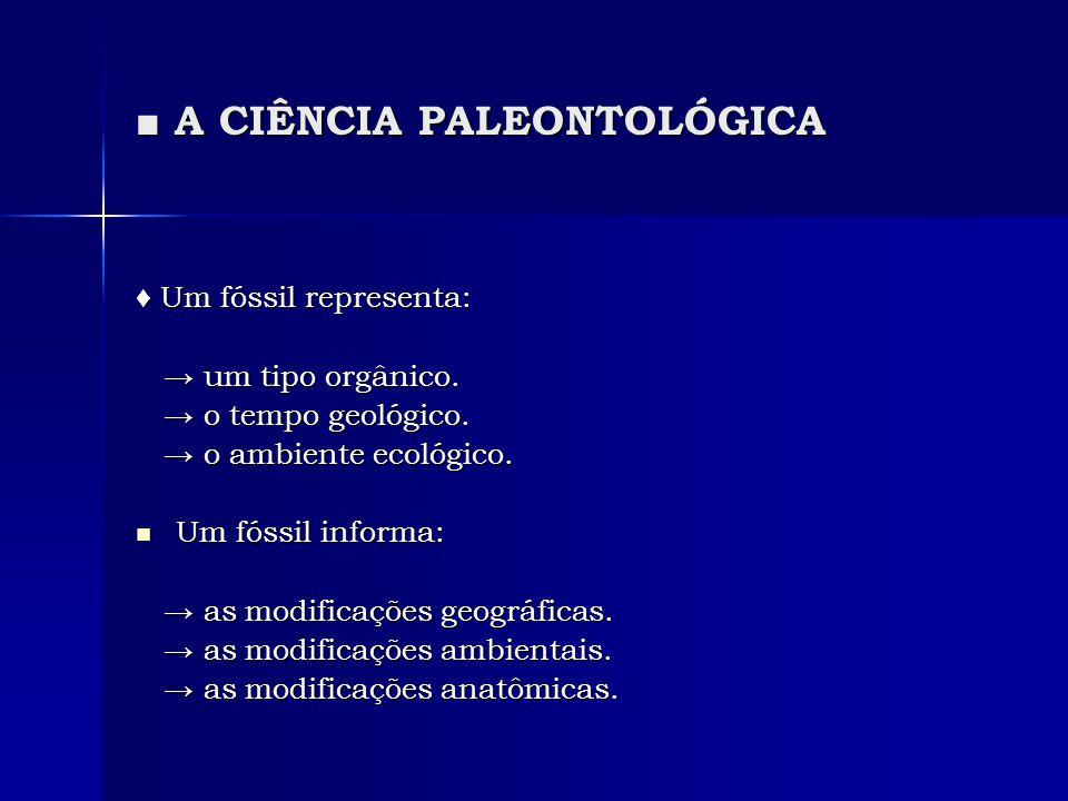 A CIÊNCIA PALEONTOLÓGICA A CIÊNCIA PALEONTOLÓGICA Um fóssil representa: Um fóssil representa: um tipo orgânico. um tipo orgânico. o tempo geológico. o