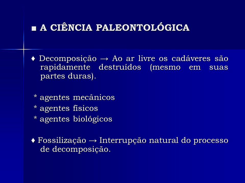 A CIÊNCIA PALEONTOLÓGICA A CIÊNCIA PALEONTOLÓGICA Decomposição Ao ar livre os cadáveres são rapidamente destruídos (mesmo em suas partes duras). Decom