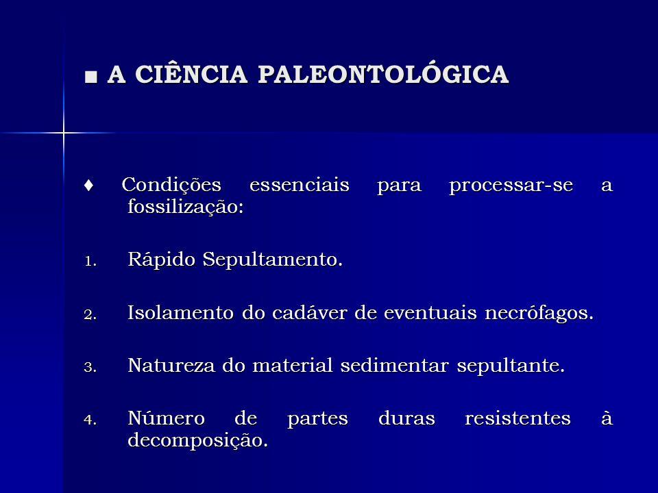 A CIÊNCIA PALEONTOLÓGICA A CIÊNCIA PALEONTOLÓGICA Condições essenciais para processar-se a fossilização: Condições essenciais para processar-se a foss