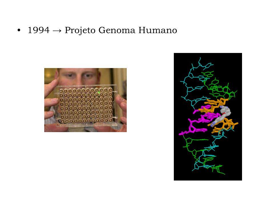 1994 Projeto Genoma Humano