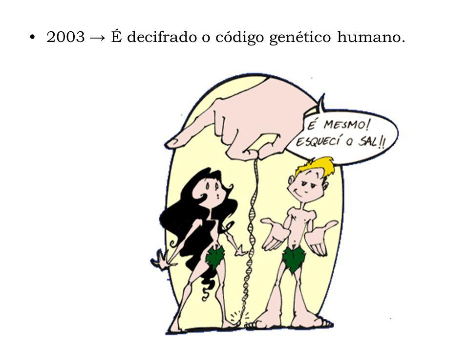 2003 É decifrado o código genético humano.