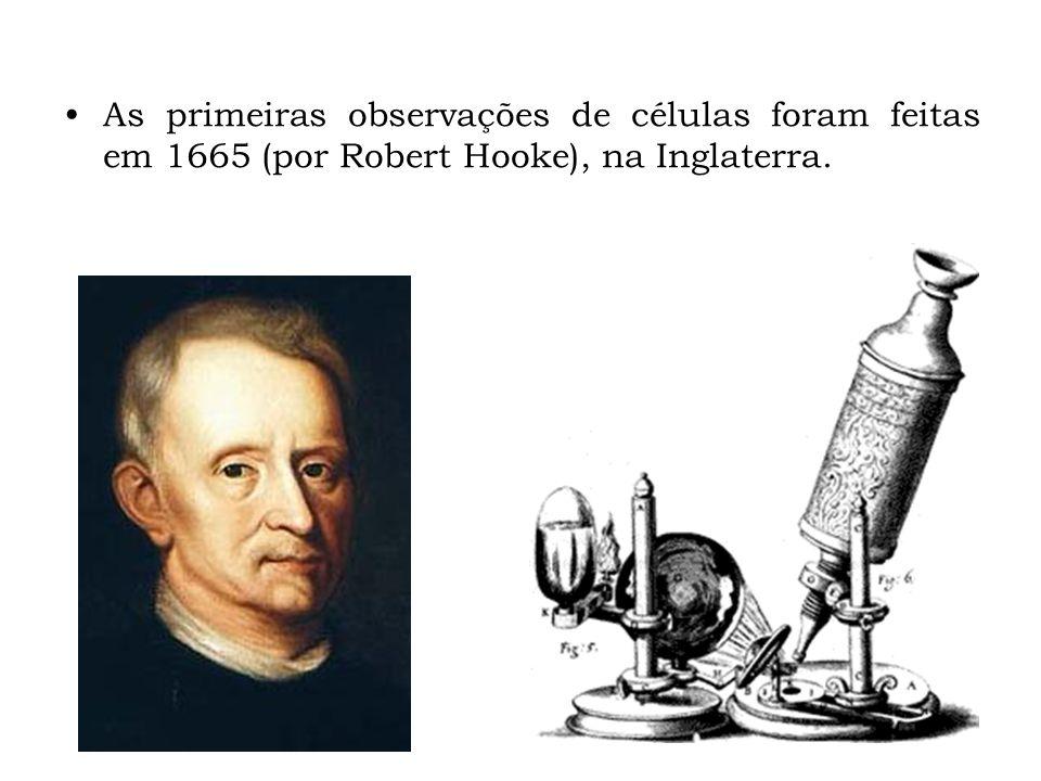 As primeiras observações de células foram feitas em 1665 (por Robert Hooke), na Inglaterra.
