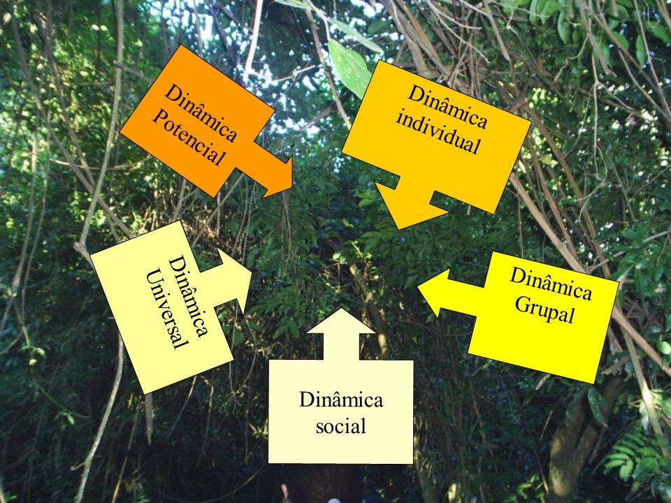 Uma proposta de trabalho com base na espiral evolutiva de Teillard de Chardin