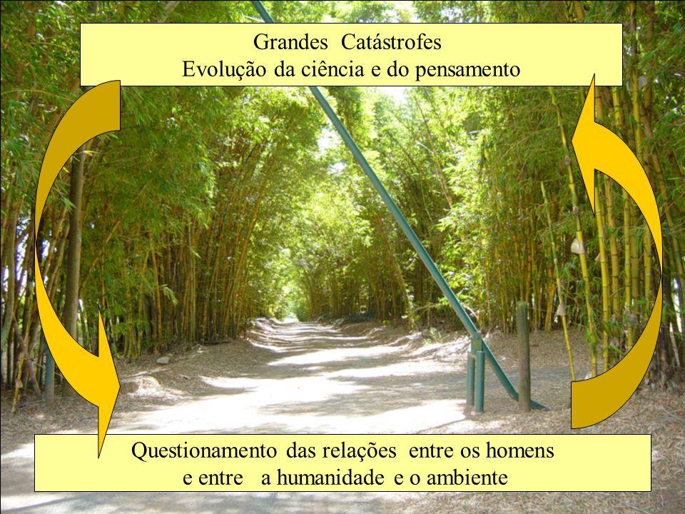 Perda da noção de interdependência Degradação ambiental